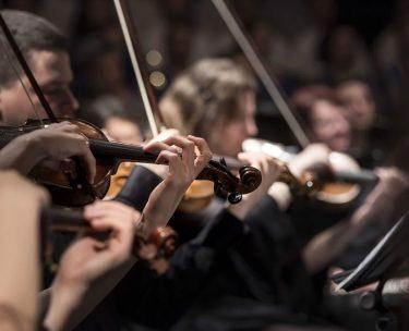 ウィーンフィルの楽器は日本人が持つ楽器より安価な物が多いのは本当?
