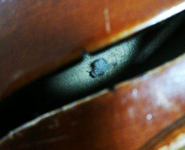 バイオリンの中の埃玉の悪影響と対処法