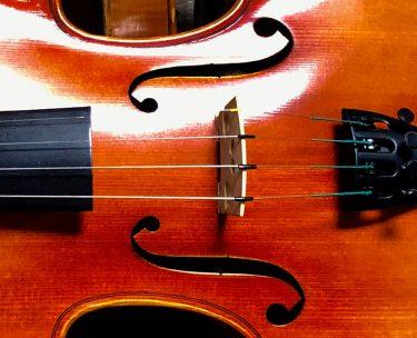 バイオリンのf孔の形についての豆知識を知ると、もっと好きになる