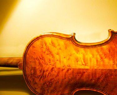 バーズアイ(鳥目杢)のバイオリンと音の違い