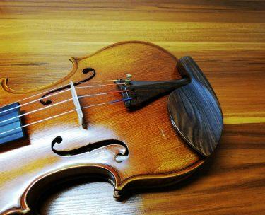 【バイオリンの顎当ての種類】形はどれがいい?どう選ぶ?位置は?