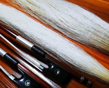 バイオリンの弓に使う馬(動物)の毛は産地によって違う?