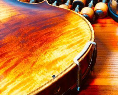 バイオリンの裏板の上下に黒い点はなにか解説(黒檀の木釘です)