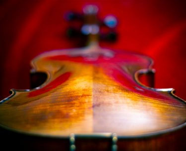 バイオリンにおける裏板の役割