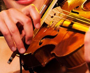 いまさら聞けないバイオリンの弓の正しい持ち方教えます