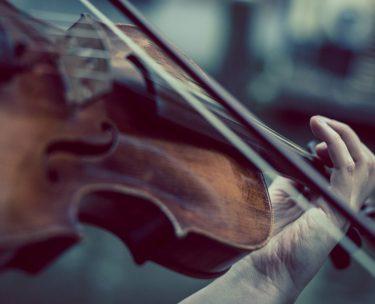 古いバイオリンと新しいバイオリン、どう違う?